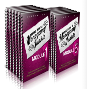 make him a monogamy junkie download pdf ebook and book