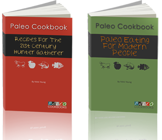 easy paleo recipes cookbook