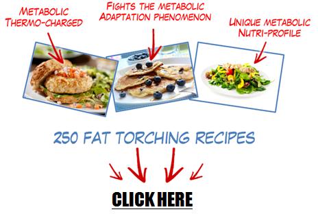 metabolic-cooking-pdf