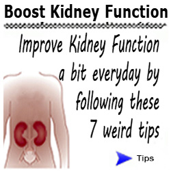 the-all-natural-kidney-health-kidney-function-restoration-program-diet-plan