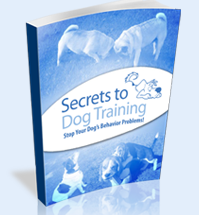 Miracle forex secrets pdf